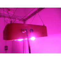 Buy cheap Best for farm greenhouse,manufacturer,high quality,300w led grow light from wholesalers