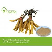 Buy cheap wholesale Chinese cordyceps extract polysaccharide 50% with best price free sample from wholesalers