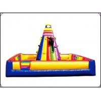 Buy cheap Community Used Inflatable Bounce Toys Kids&Adults bouncy Castle with Climb from wholesalers