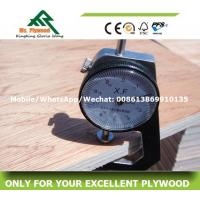 Buy cheap Cheap Plywood,Linyi Plywood,Bintangor Plywood,Commercial Plywood from wholesalers