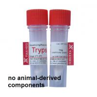 Buy cheap Sequencing Grade Recombinant Trypsin for in-gel Protein Digestion by shanghai yaxinbio product