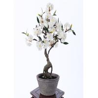 Buy cheap 55CM Artificial Bonsai Tree , Artificial Decorative Trees For Harried Modern Lifestyle from wholesalers