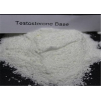Buy cheap Pharmaceutical Testosterone Steroids Powder / Testosterone Based Steroids No Ester CAS 58-22-0 from wholesalers