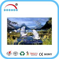 Buy cheap Eco friendly PET lenticular 3d posters with Flip effect 100LPI 75LPI product