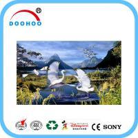 Buy cheap Eco friendly PET lenticular 3d posters with Flip effect 100LPI 75LPI product