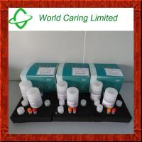 Buy cheap Magnetic bead method animal tissue genomic DNA extraction kit from wholesalers