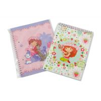 Buy cheap A4, A4+, A5, A5+, A6 Customized OEM Paper cover Spiral Bound Notebook from wholesalers
