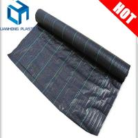 Buy cheap black color  Anti UV Woven Ground Cover With Greem Line For Agriculture ground cover fabric from wholesalers