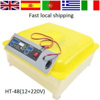 Buy cheap 2016 newest Full Automatic transparent  12 V 48 eggs DC Power mini 48  egg Incubator for sale with CE certificate HT-48 from wholesalers
