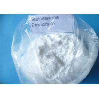 Buy cheap Supply Free Sample Test Propionate Powder Body Shape Testosterone Propionate from wholesalers