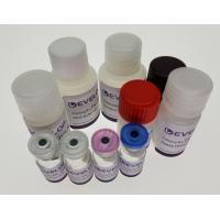 Buy cheap Goat Insulin Like Growth Factor Binding Protein 4 (IGFBP4) ELISA Kit from wholesalers