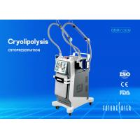 Buy cheap Portable Frozen Cryolipolysis Slimming Machine For Spots / Wrinkles Removal from wholesalers