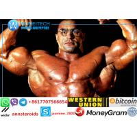 Buy cheap 62-90-8 Bodybuilder Nandrolone Decanoate Powder product