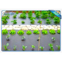 Buy cheap Eco-friendly 30gsm Black Color Non woven weed control fabric For Vegetables from wholesalers