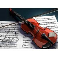 Buy cheap Violin / Guitar / Cello Humidity Stabilizer No Water No Drips No Mess from wholesalers