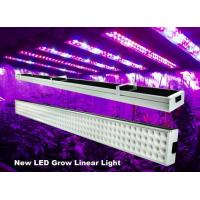 Buy cheap 4 Feet Linear Hydroponic Led Grow Lights Bar 120w For Greenhouse , 50Hz-60Hz from wholesalers