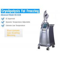 Buy cheap Body Slimming / Shaping Cryolipolysis Fat Freezing Machine With Intelligent Temperature Control from wholesalers