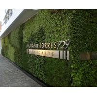 Buy cheap Landscaping Artificial Plants Wall Plastic Grass for Building Wall Coverings with Logo from wholesalers