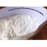 Buy cheap Nandrolone Phenypropionate Growth Hormone Steroid from wholesalers