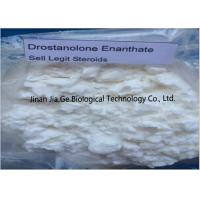 Buy cheap Bodybuilding Raw Steroid Powders Drostanolone enanthate CAS 472-61-1 from wholesalers