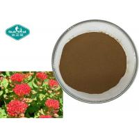 Buy cheap Rhodiola Rosea Natural Botanical Extracts , Dietary Pure Natural Plant Extracts from wholesalers