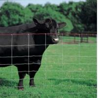 Buy cheap Ranch Fence product