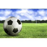 Buy cheap Soccer&football court artificial turf (samples free) from wholesalers
