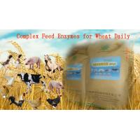 Buy cheap Yellowish Powdered Complex Poultry Feed Enzymes For Wheat Daily Diet Szym-nutriWH from wholesalers