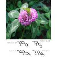 Buy cheap Red Clover Extract 8%-40%Red clover Isoflavones from wholesalers