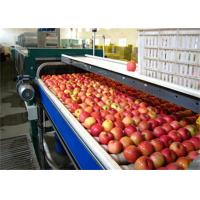 Buy cheap High Speed Vegetable and Fruit Processing Machine / Apple Juice Making Machinery from wholesalers