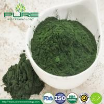 Buy cheap Organic Green Spirulina Powder from wholesalers