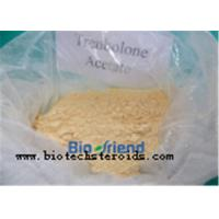 Buy cheap Theacrine CAS 2309-49-1 Smart Drugs Anabolic Steroid Powder for Brain Improve Belongs to Nootropics from wholesalers