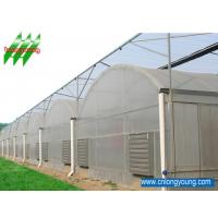 China PC Sheet Greenhouse, Gothic Multi-Span greenhouse, Saw-Tooth Greenhouse, Economical Tunnel Greenhouse, Netting House on sale
