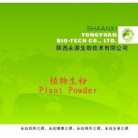 Buy cheap Shaanxi Yongyuan Bio-Tech supply Herbal Powder,Achyranthes aspera Powder from wholesalers