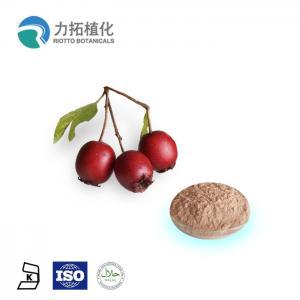 China Flavone 2% - 90% (UV) Hawthorn Berry Extract / Fruit Extract Powder Maslinic Acid on sale
