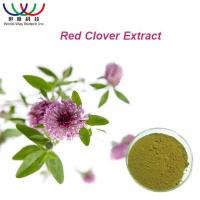 Buy cheap 100% Natural Red Clover Extract Isoflavone 8% 20% 40% HACCP HALAL KOSHER product