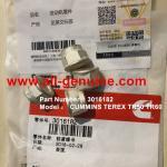 Buy cheap TEREX CUMMINS 3016182 LOCK NUT NHL DUMP TRUCK TR35 TR50 TR60 TR100 3305B 3305F 3303 3307 TR45 TR70 MT4400 ALLISON from wholesalers