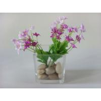 Buy cheap Mini Square Glass Vases For Centerpieces For Home Decoration from wholesalers