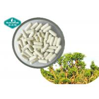 Buy cheap 100% Natural Yohimbe Bark Extract 500 mg Capsule for Men's Health from wholesalers