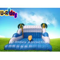 Buy cheap Playing Center Mechanical Surfboard Rental / Inflatable Surfboard Simulator from wholesalers