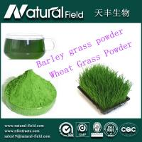 Buy cheap 25:1organic barley grass juice powder from wholesalers