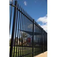 Buy cheap Black Powder Coated Tubular Fence / Steel Fence / Wrought Iron Fence for Australia from wholesalers