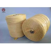 Buy cheap UV Treated Flame Retardant PP Twine for Mats Weaving or Package Baler from wholesalers