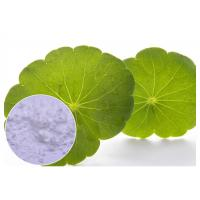Buy cheap Leaf Extracted Centella Asiatica Powder Anti - Inflammatory With Water Solvent from wholesalers