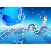 Quality Professional Translating Services for sale