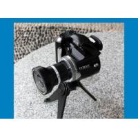 Buy cheap Wide Angle Lens 2.4-inch 12Mega Pixels Digital Camera DC-500T from wholesalers