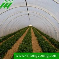 Buy cheap Tunnel Greenhouse,longyoung from wholesalers