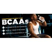 Buy cheap essential amino acids for your muscle, BCAAs for bodybuilding, BCAA 2:1:1 from wholesalers