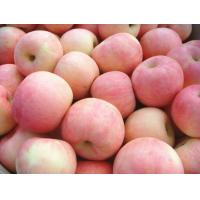 Buy cheap Grade A Sweet Red Fuji Apple Contains Niacin For Apple Juice from wholesalers