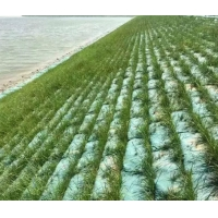Buy cheap Nonwoven Geotextile Silt Filter Bags  For Dewatering from wholesalers